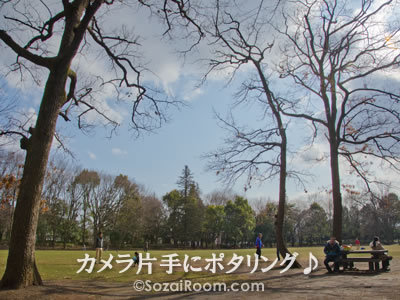 淵野辺公園・芝生広場