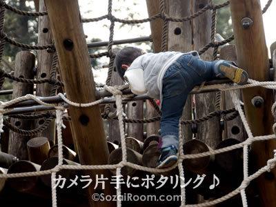 ジャングルを登る男の子